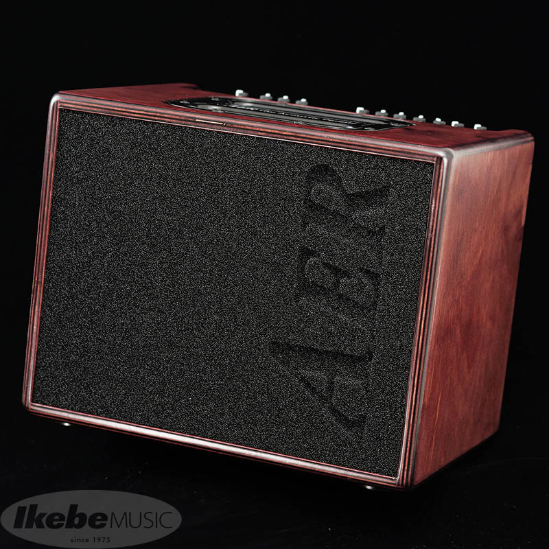 "AER IKEBE ORIGINAL Compact60/4 BIRCH PLYWOOD EDITION ""WOODY"""